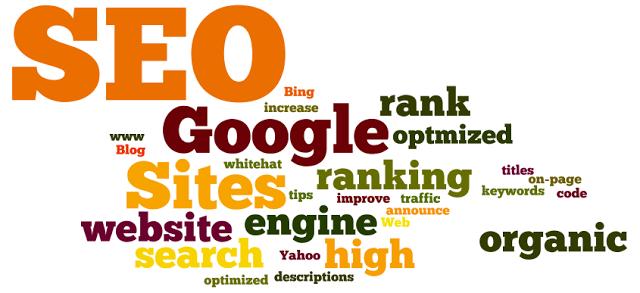 SEO expert or digital marketing
